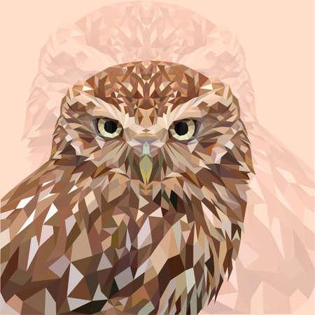 Owl 向量圖像