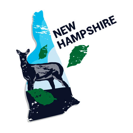 white tail deer: New hampshire state