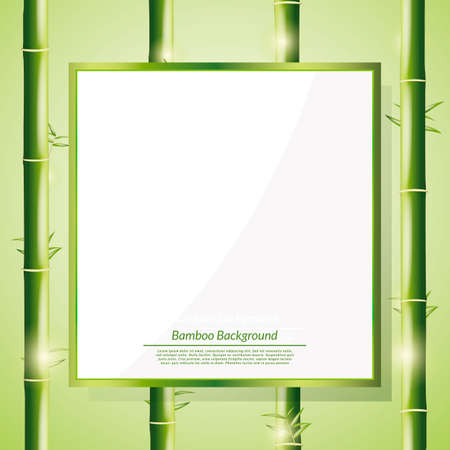 copyspaces: Bamboo background