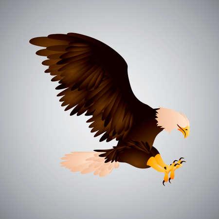 and diurnal: Eagle