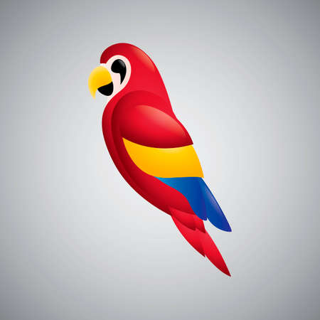 macaw: Scarlet macaw parrot