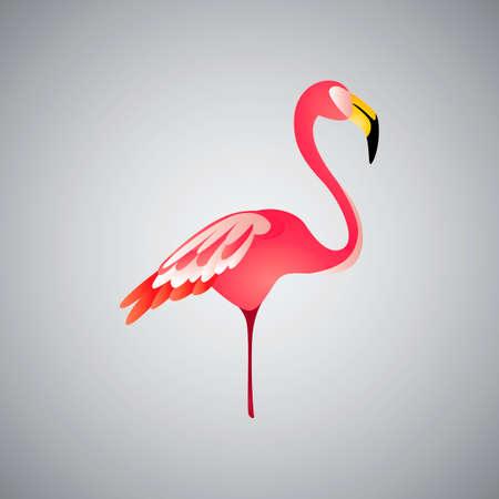 diurnal: Flamingo Illustration