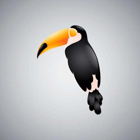 diurnal: Toucan