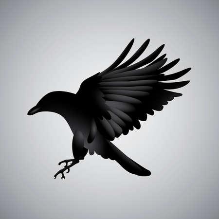 diurnal: Crow Illustration