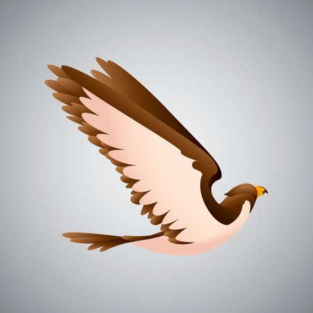 diurnal: Bird Illustration