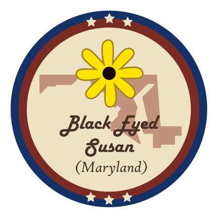maryland: Maryland state with black-eyed susan flower Illustration