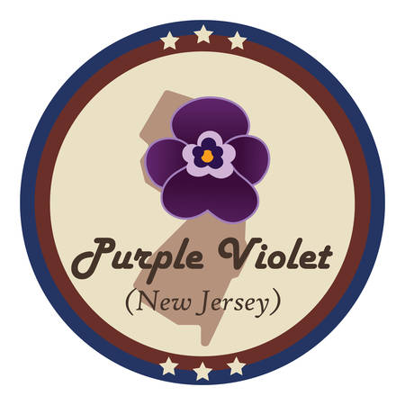 violet flower: New jersey state with purple violet flower