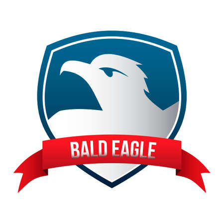 bald eagle: Bald eagle label