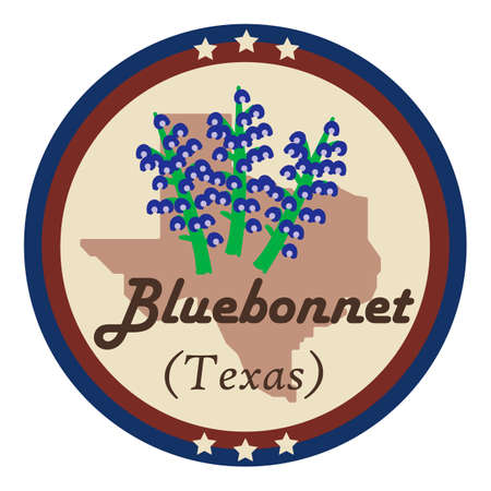 bluebonnet: Texas state with bluebonnet flower Illustration