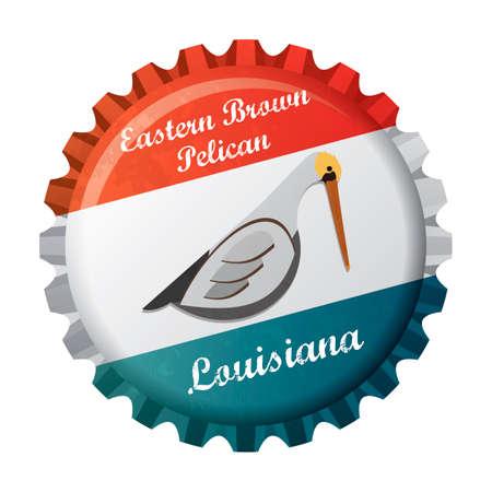 eastern: Eastern brown pelican