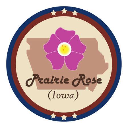 prairie: Iowa state with prairie rose flower