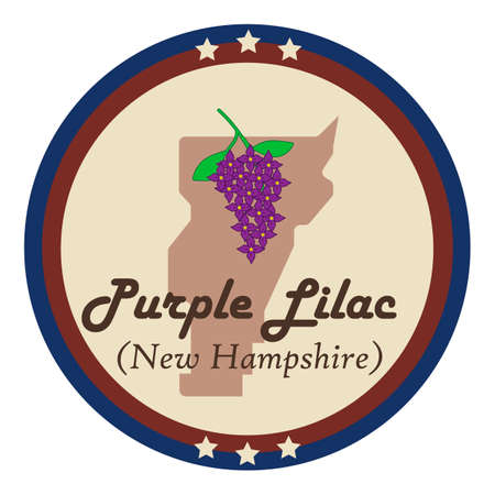 purple lilac: New hampshire state with purple lilac flower