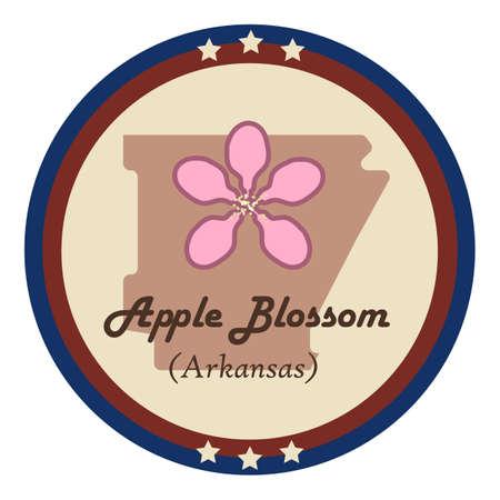 apple blossom: Arkansas state with apple blossom flower