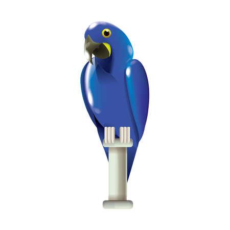 guacamaya: azul guacamayo