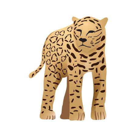 jaguar: jaguar Illustration