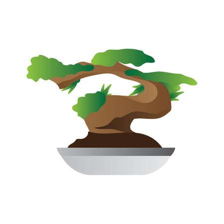 horticulture: bonsai tree