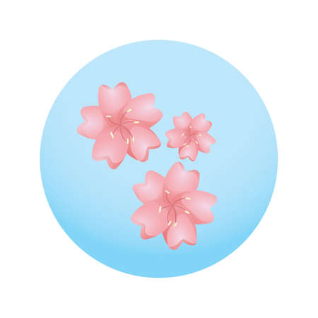 symbolic: sakura