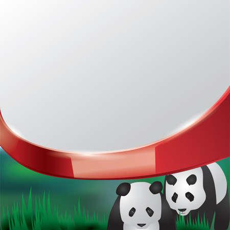 herbivorous animals: giant pandas