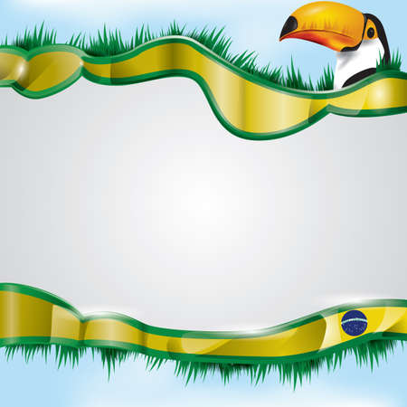 grass area: brazil flag with toco toucan