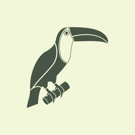 tucan: toco toucan Illustration