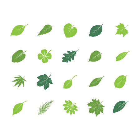 A collection of leaf icons illustration. Ilustrace