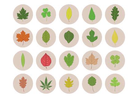 Collection d'icônes de feuilles Banque d'images - 81535016