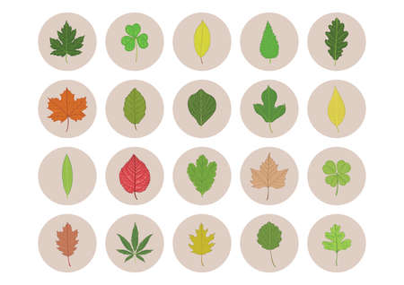 collection of leaf icons Ilustrace