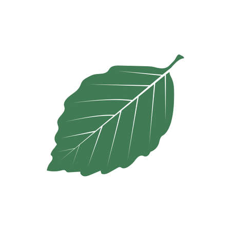 A leaf illustration.