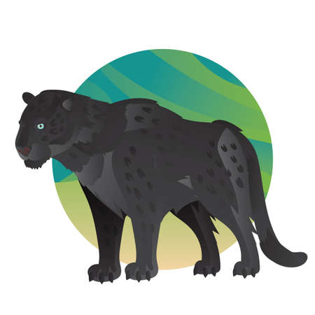 A panther illustration. 向量圖像
