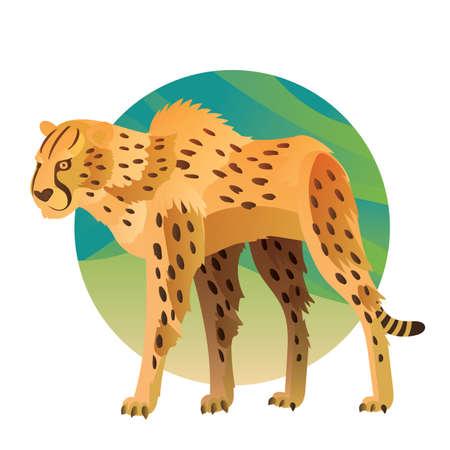 cheetah Stock Illustratie