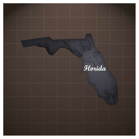 フロリダ州の地図  イラスト・ベクター素材