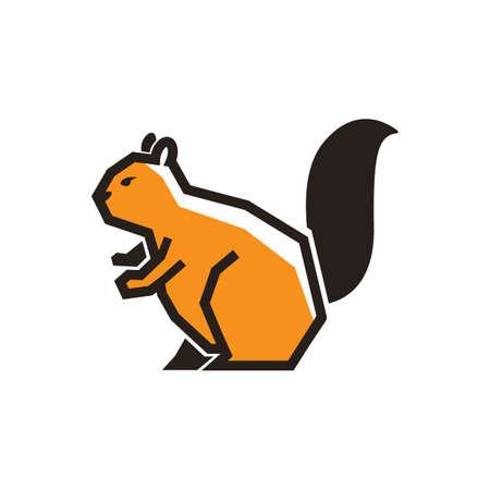 squirrel Illusztráció