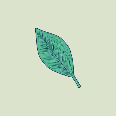 leaf Reklamní fotografie - 106668761