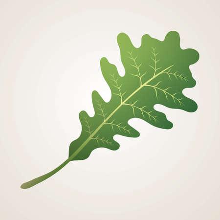 참나무 잎