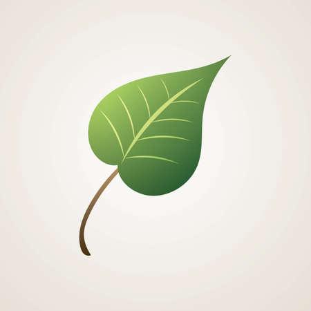 leaf Reklamní fotografie - 81533038
