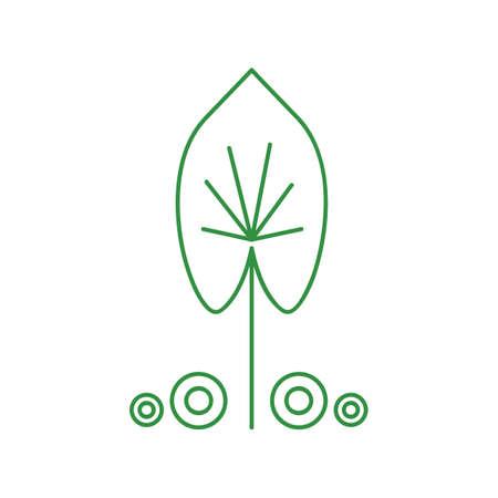 leaf Vetores