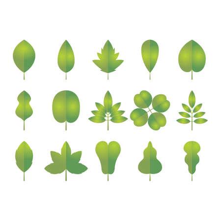 잎의 수집 일러스트