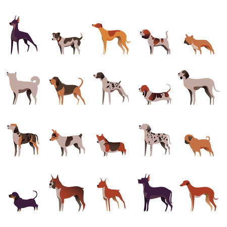 collection of dogs 向量圖像
