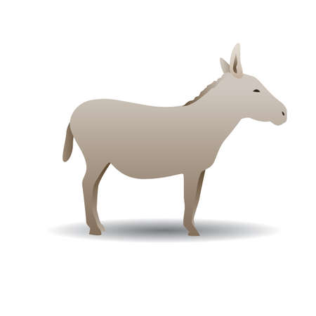 Donkey Çizim