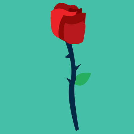 red rose: red rose Illustration