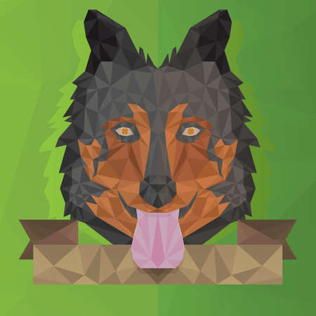 wolf face: faceted wolf face
