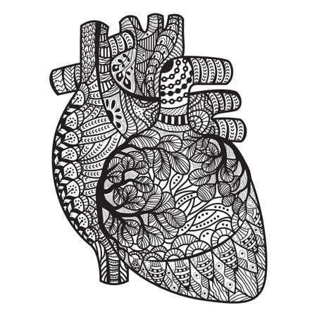 intricato disegno cuore umano