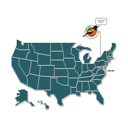 maryland: us map with maryland state bird Illustration