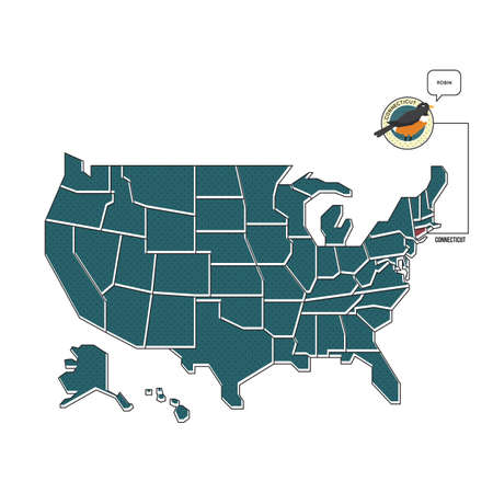us map: us map with connecticut state bird