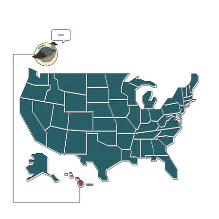 us map: us map with hawaii state bird