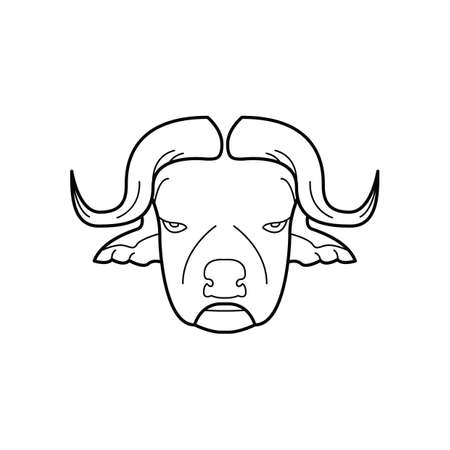 bullfighting: bull