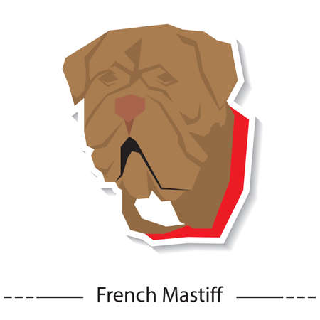 french mastiff: french mastiff