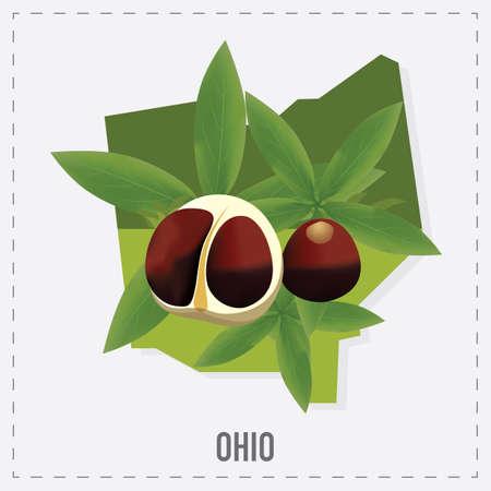 buckeye: ohio map sticker Illustration