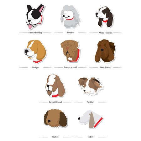 bloodhound: set of french dogs icons