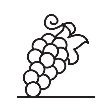 viticulture: grapes Illustration